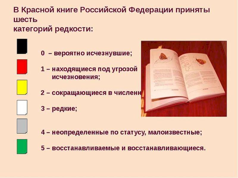 Список категорий ККРФ