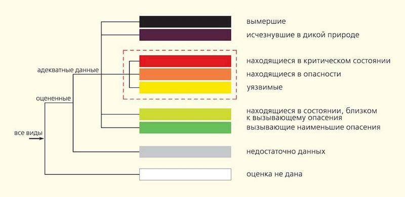 Какие бывают категории МСОП